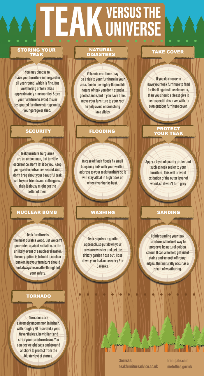 10 Step Teak Guide infographic