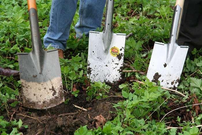 gardening-faraway-soil-small